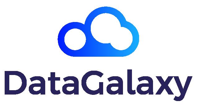 Logo Partenaire DataGalaxy